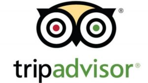 how-important-is-tripadvisor-to-consumers